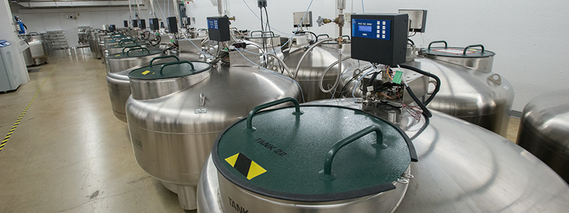 Liquid nitrogen storage tanks containing valuable cryopreserved biological samples. Photo courtesy of the U.S. Department of Agriculture.