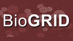BioGRID Logo