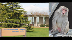 California NPRC Logo