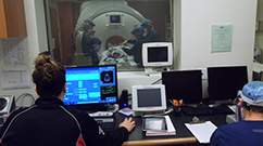 A marmoset undergoing an MRI