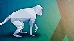 SPF Macaque Consortium