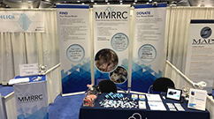 MMRRC Booth display