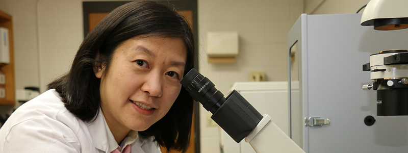 Xuan Pan, V.M.D., Ph.D., DACVIM. Photo courtesy of Xuan Pan, University of Wisconsin–Madison School of Veterinary Medicine.